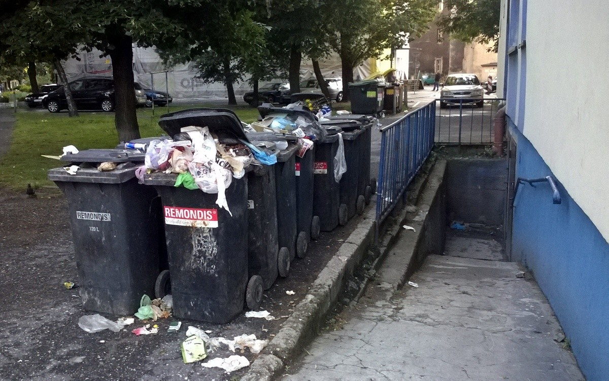 Kto posprząta miasto?