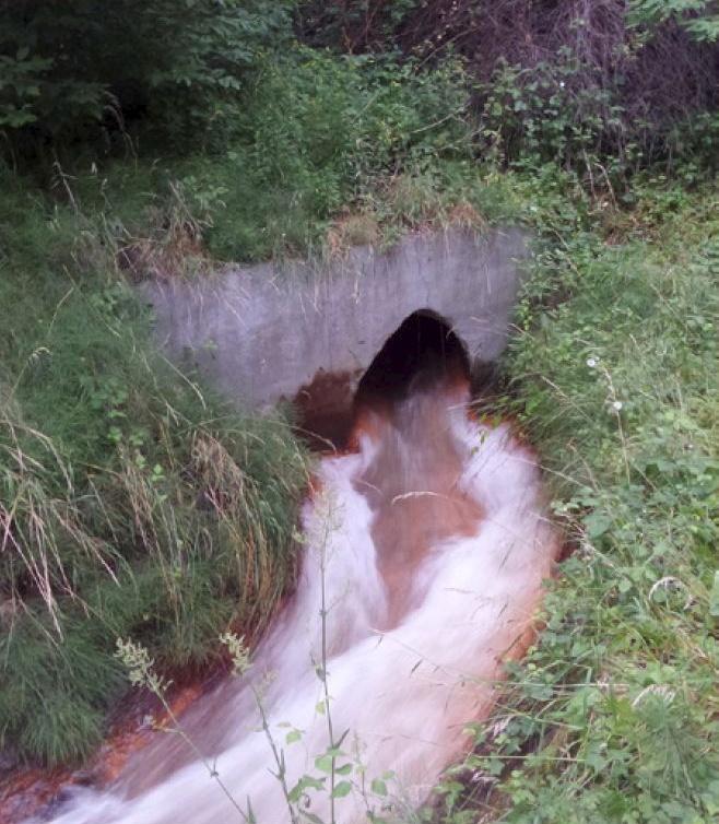 Brynica – rzeka czy ściek?